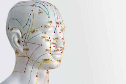 Akupunktur Model